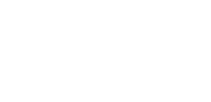 48 Hour Sale Logo