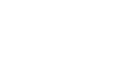 Salomon-MDF Logo