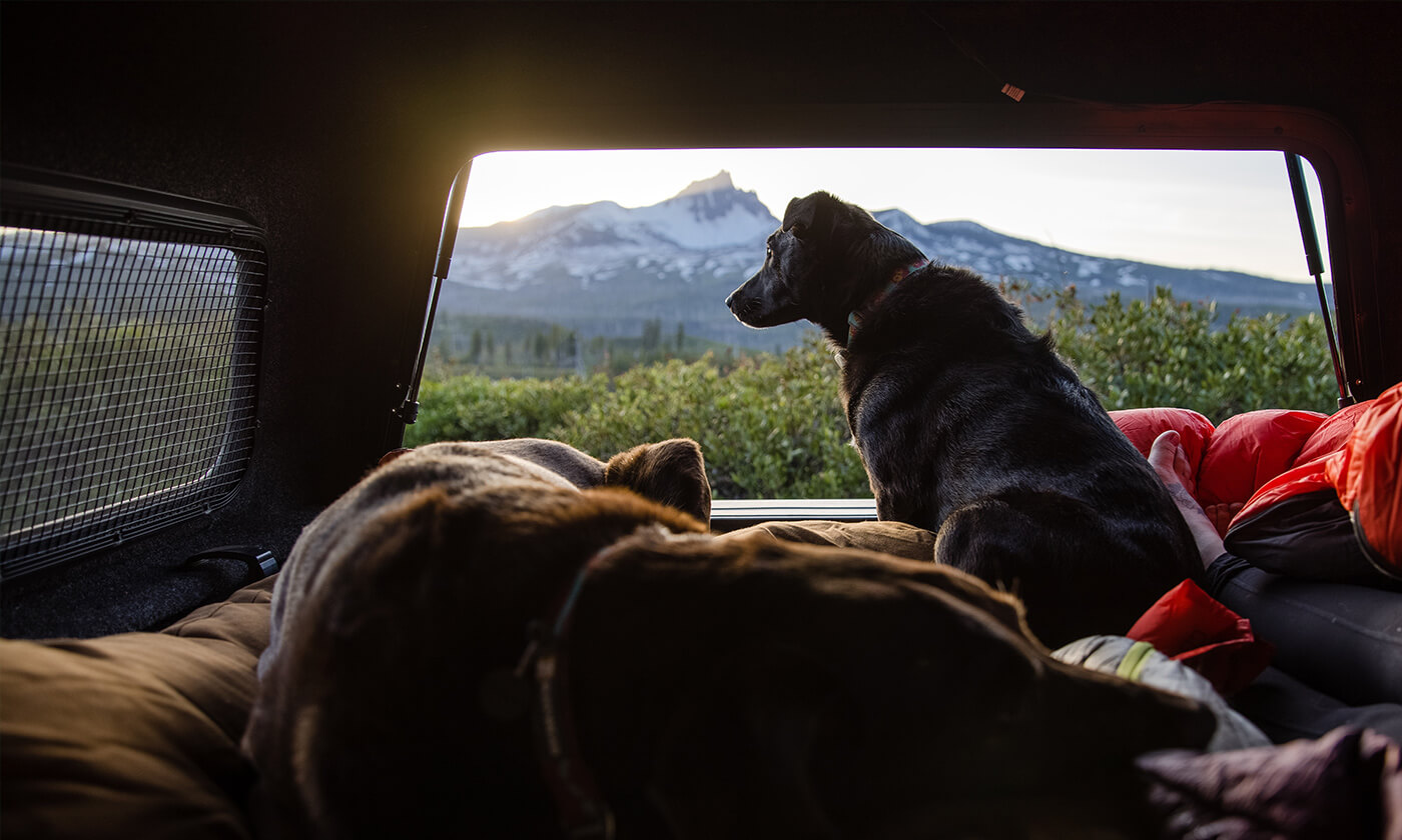 Adventure With Your Best Friend