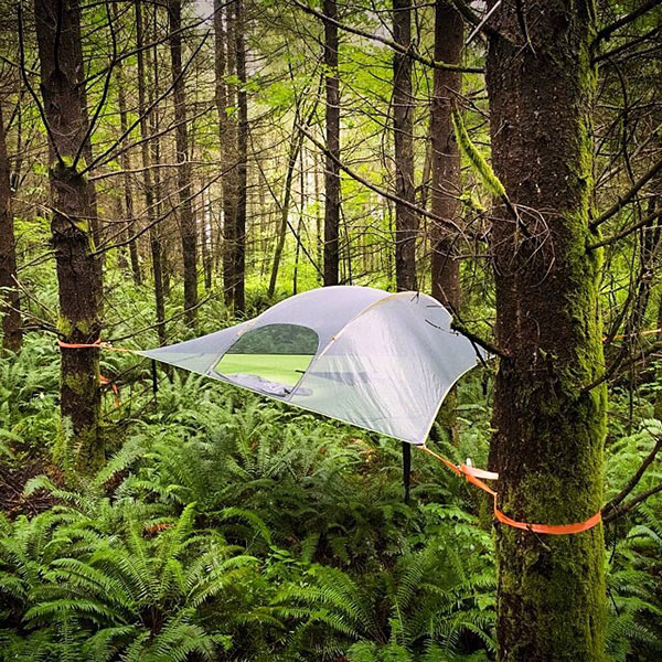 @tentsile & Tentsile | Backcountry.com