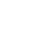 The Big Brands Sale Logo